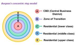 circular model